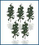 végétation schématique