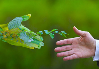 abaqueplast prend soin de l'environnement