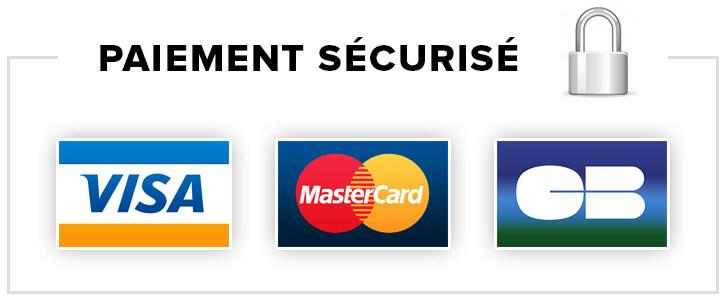 Logo paiement sécurisé en ligne